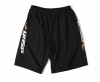 GASP US MESH TRAINING SHORTS Schwarz